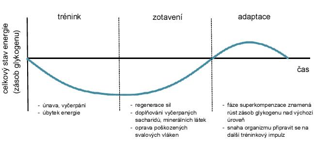 Czech Sport Guru výživa