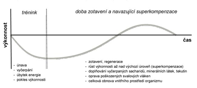 Czech Sport Guru - sportovní výkon