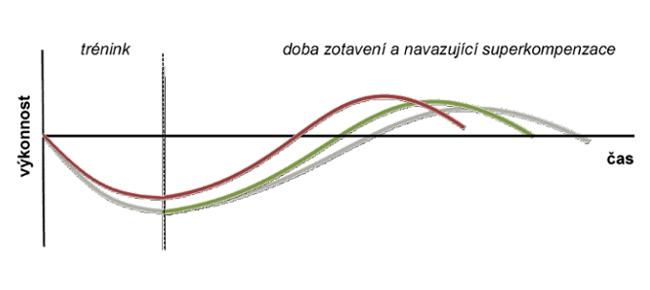 Servis a podpora pro sportovce v České republice - Czech Sport Guru